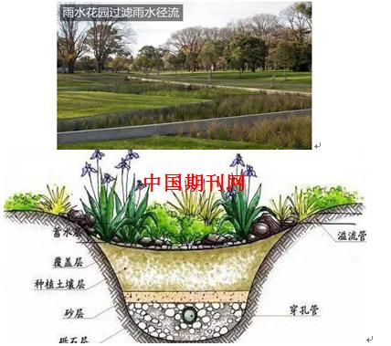 城市城市建设海绵在理念园林景观设计中的应用绘制一幅画图片
