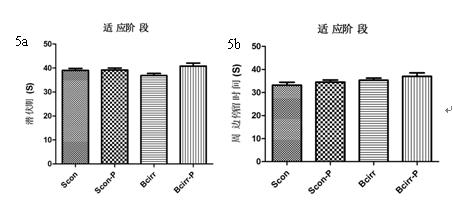 与假手术组比较,胆管结扎组中大脑区域中下丘脑和海马细胞色素氧化酶